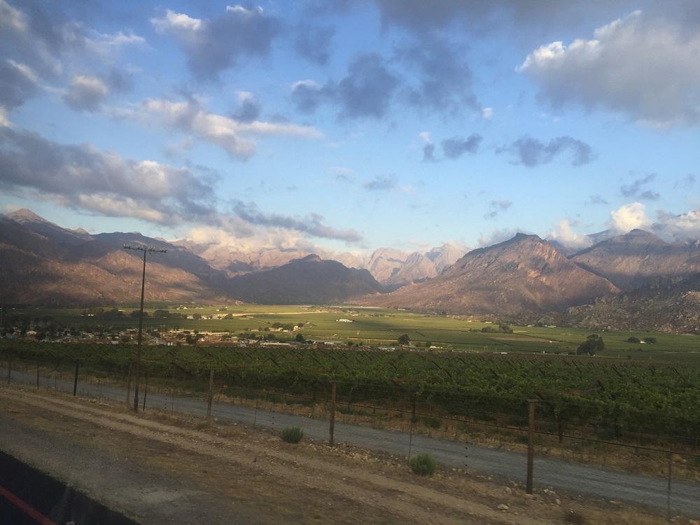 Cestou na safari - všude nekonečné vinice a hory